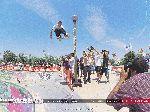 fecran.com  Des milliers de fonds d'écran et d'images - Sports > Skateboard